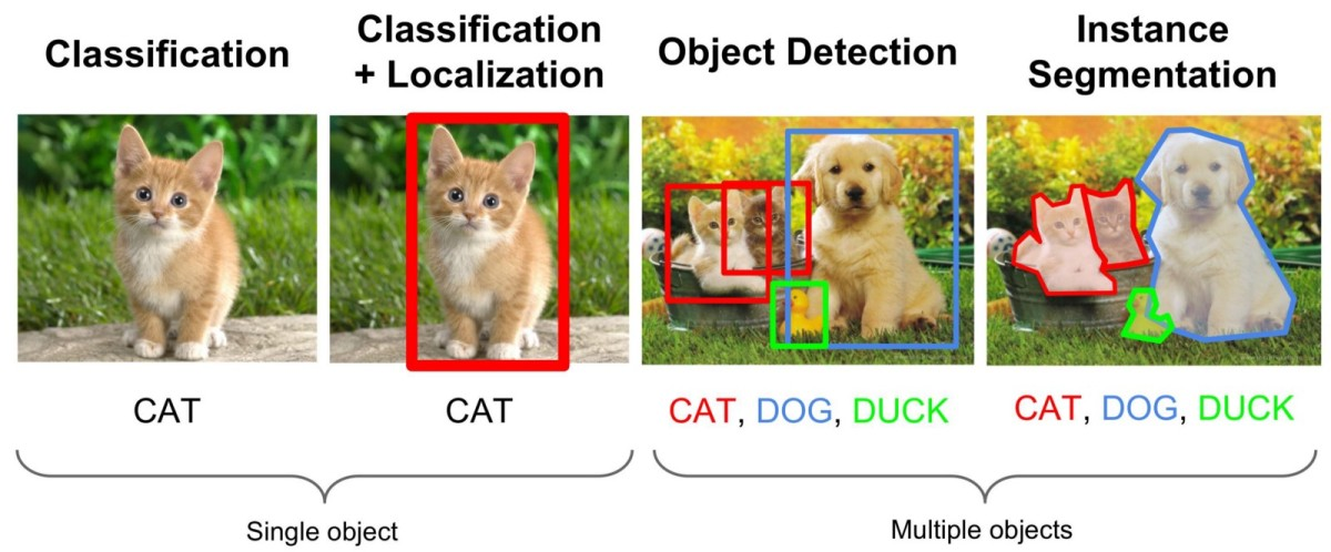 Recognizing images with Azure Machine Learning and the ONNX ResNet50v2 model